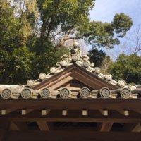 伏姫籠穴の屋根